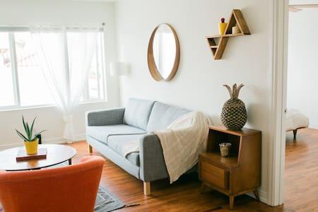 Bright, Spacious Downtown Apartment