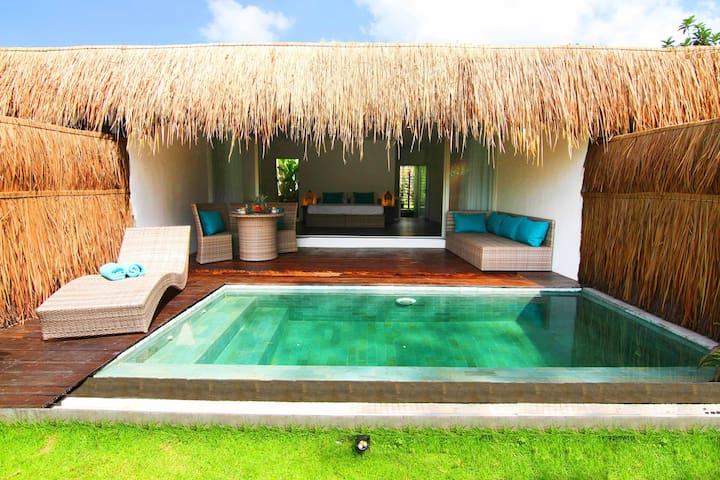 热带别墅套房私人泳池