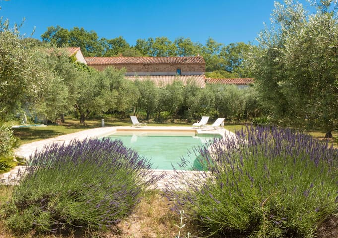 Lovely quiet cottage with large pool in a vineyard