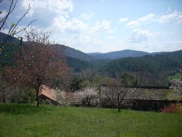 Ponteils-et-Brésis的民宿
