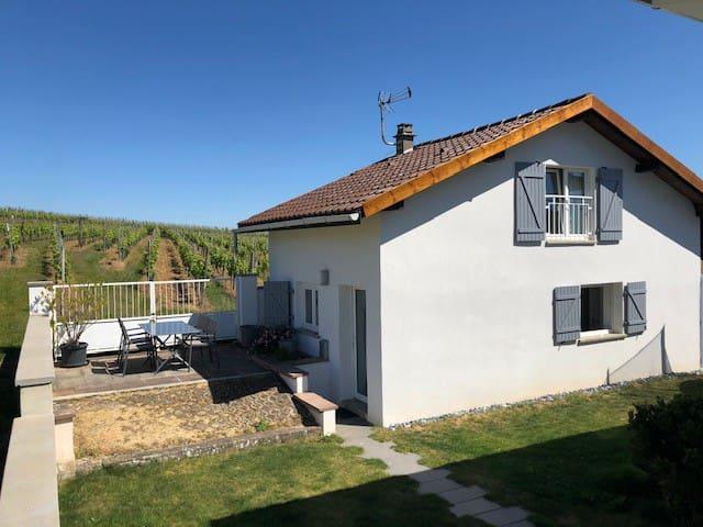 Haut-Rhin的民宿
