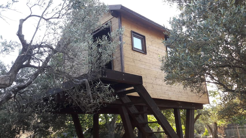 Marano Marchesato的民宿