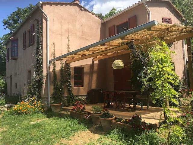 Organic farm in beautiful Tuscan countryside