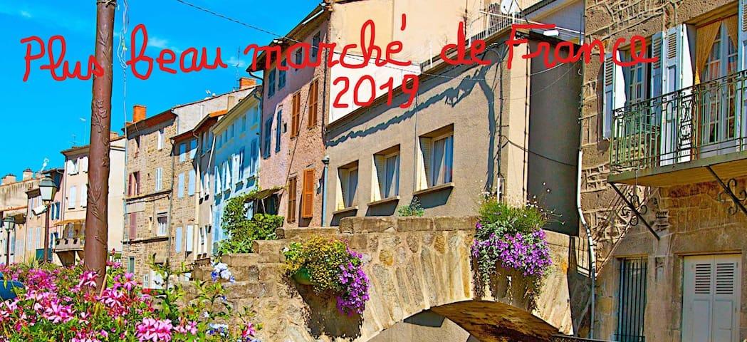 Chazelles-sur-Lavieu的民宿
