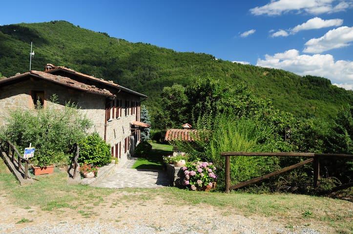 Castiglione di Garfagnana的民宿