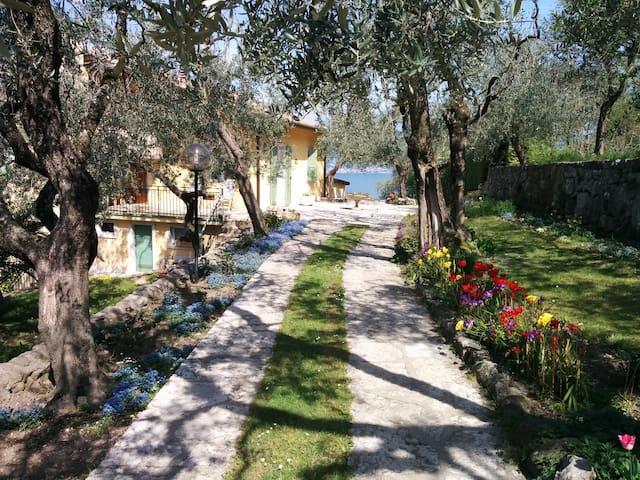 托里德尔贝纳科 (Torri del Benaco)的民宿