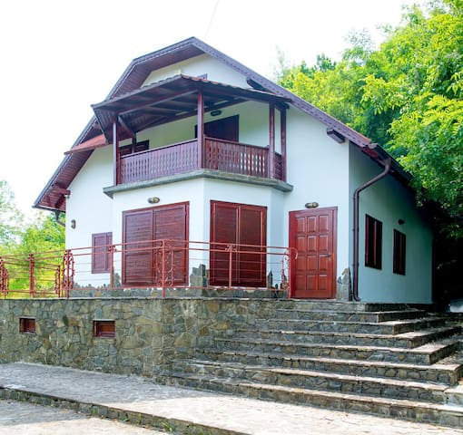 Valea Târsei的民宿