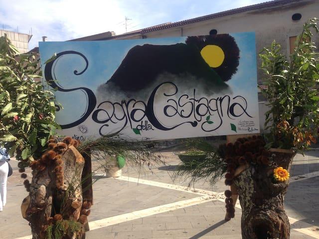 Roccamonfina的民宿