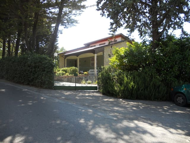 Laureana Cilento的民宿