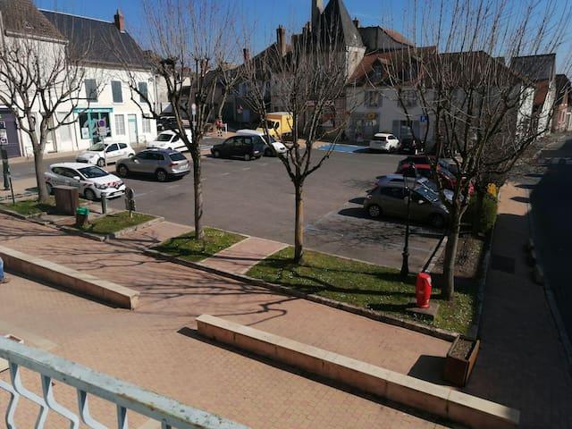 Bonny-sur-Loire的民宿