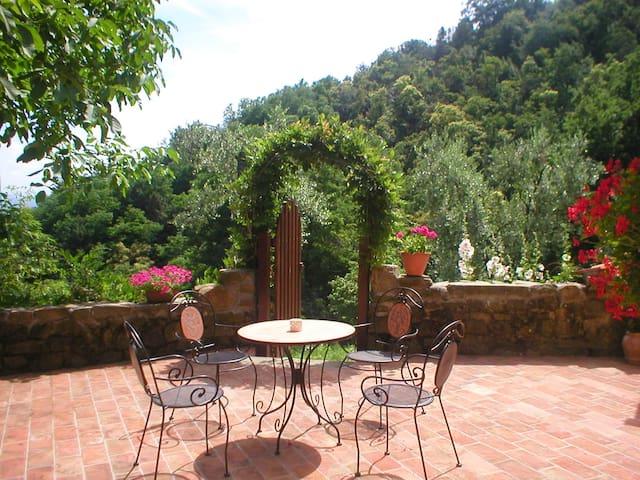Tuscan olive farm, apartment