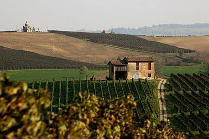 Ziano Piacentino的民宿
