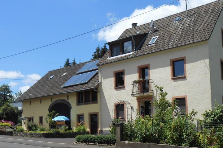 Dreis-Brück的民宿