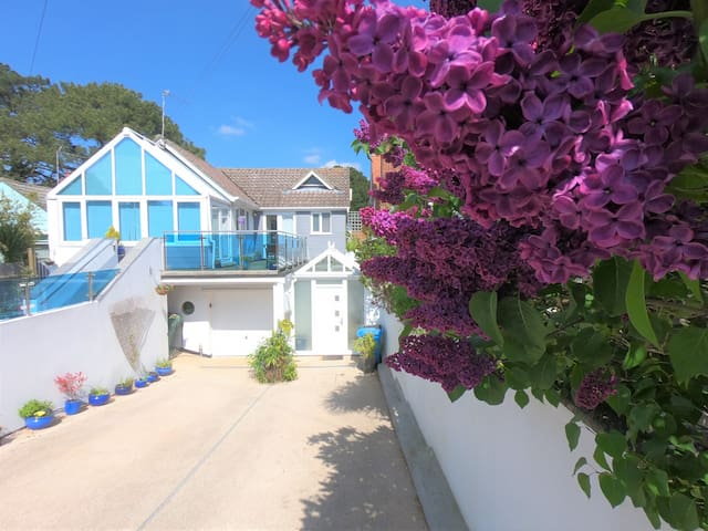 多塞特(Dorset)的民宿