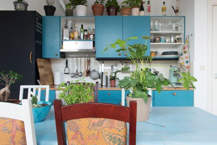 Sunny Jungle Home