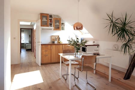 Bright apt. with free parking and free bicycles