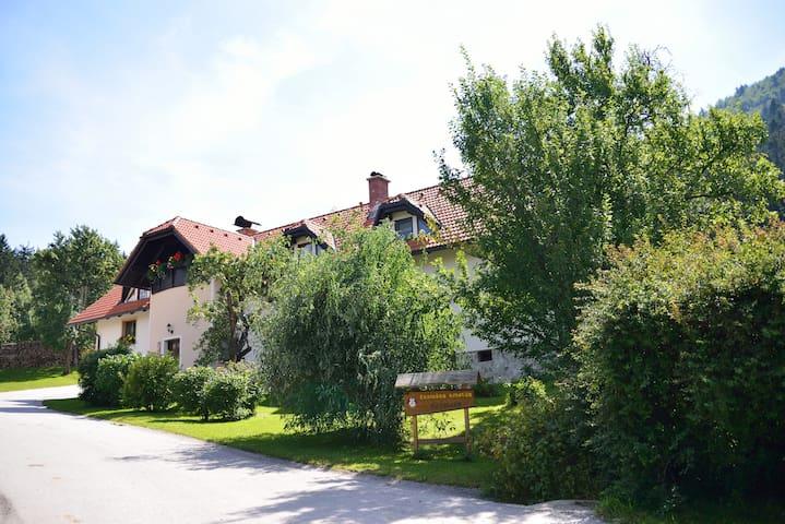 Slovenj Gradec的民宿
