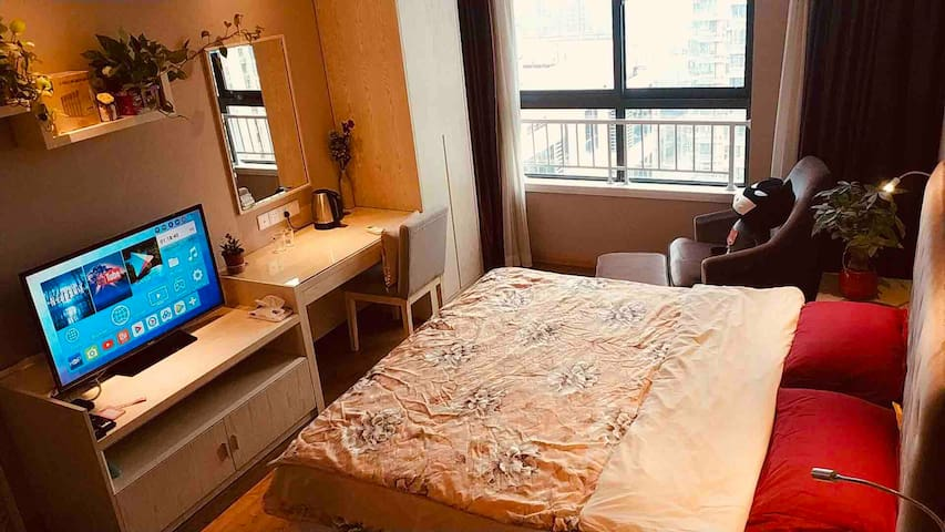 南京南站百家湖九龙湖商圈 南航河海东南大学北欧风公寓整套房间大床