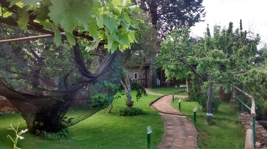 Villasbuenas de Gata的民宿