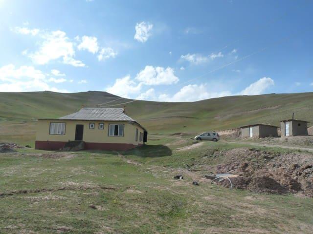 Osh的民宿