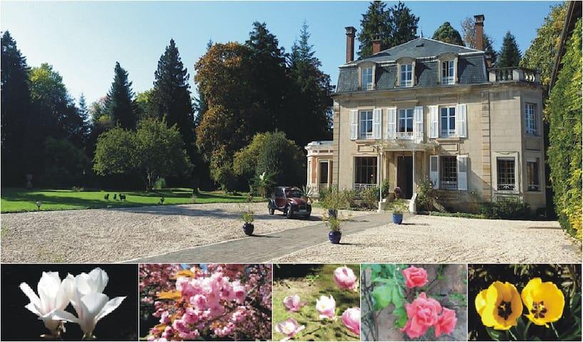 Cirey-sur-Vezouze的民宿