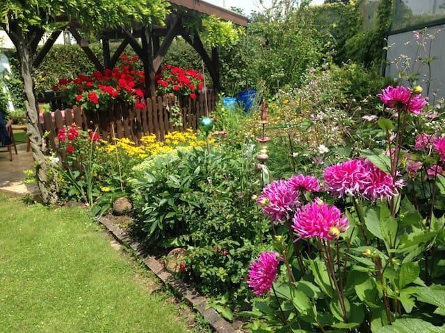 Ferienwohnung mit schönem Garten in Hagenbach