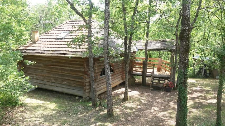 Cabane en rondins à l'orée des bois