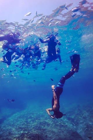 胜莲海原的体验