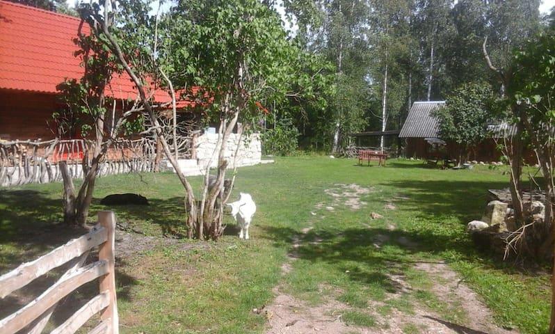Kehila, Kihelkonna, Estland的民宿