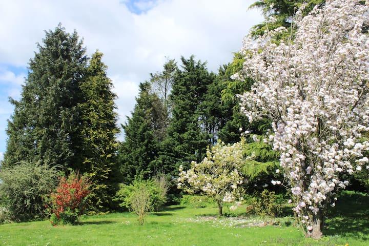 Fleury-la-Forêt的民宿