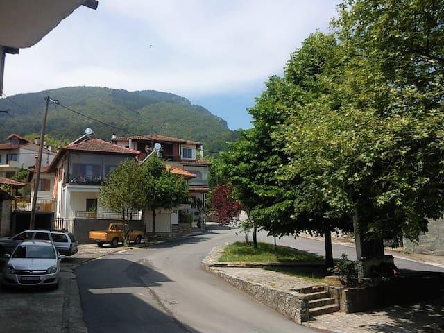 Apartment near Olympus mountain