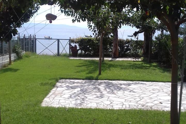 Velanidia的民宿