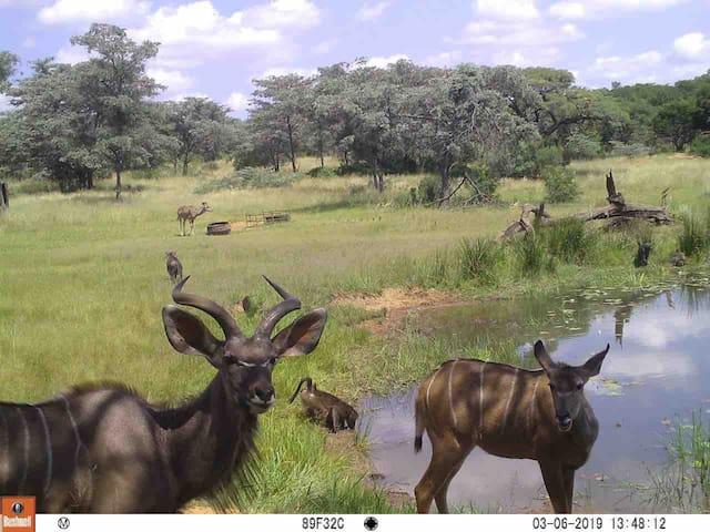 KwaMhlanga的民宿