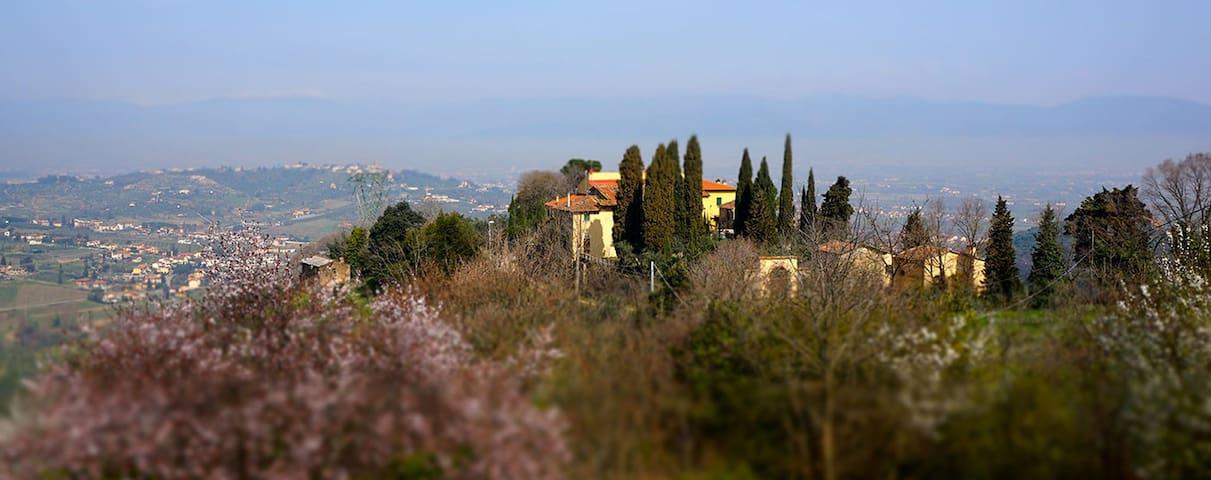 Carmignano的民宿