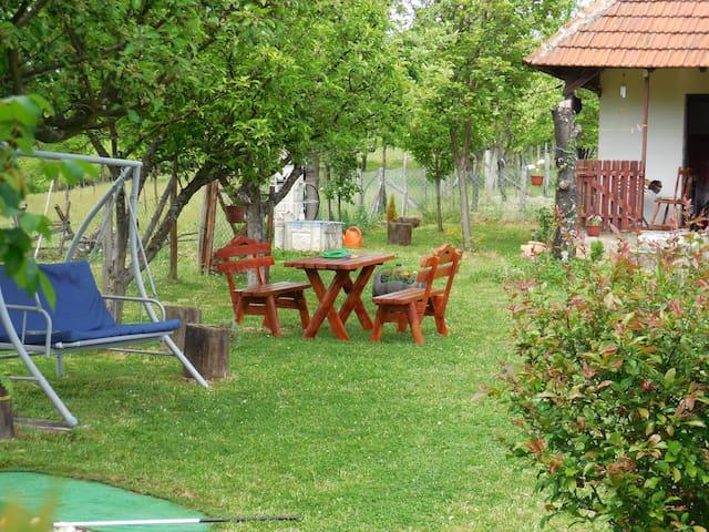 Gornji Milanovac的民宿