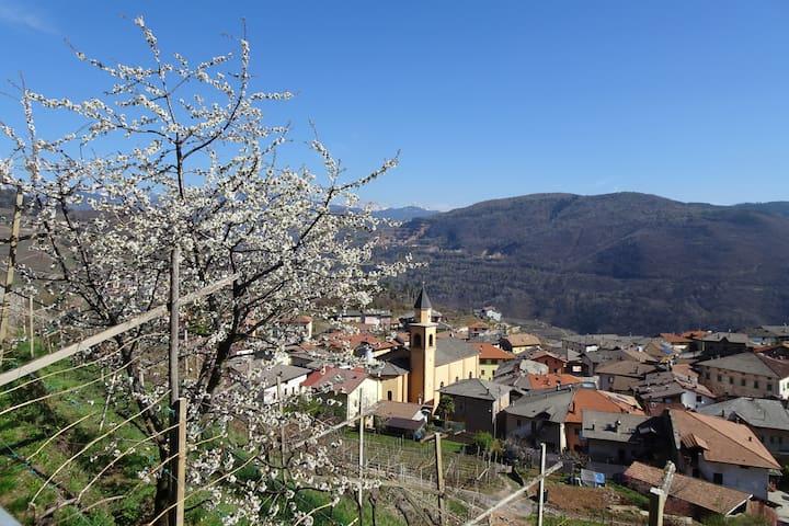 Palù di Giovo的民宿