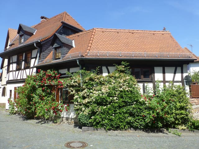 Oberursel (Taunus)的民宿