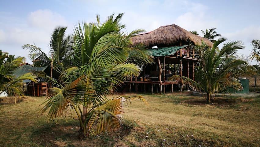 Wanathavilluwa的民宿