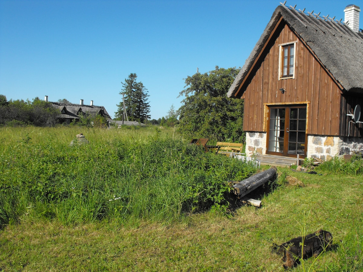 The island of Saarema - pure nature