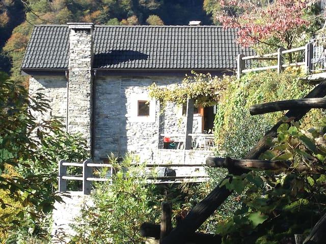 提契诺(Ticino)的民宿