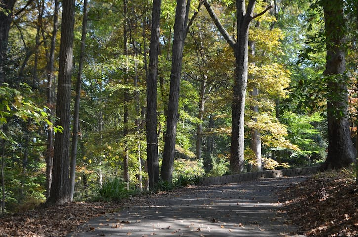 Windy Hill, A Tranquil Retreat in East Charlotte