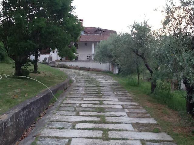 Amola Licciana Nardi的民宿