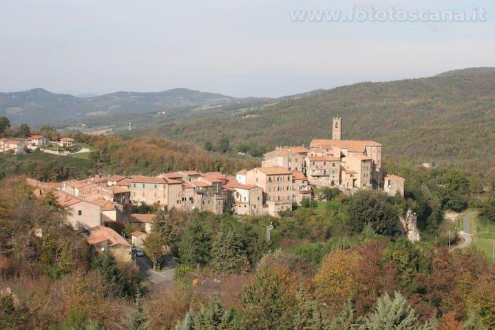 Sasso Pisano的民宿