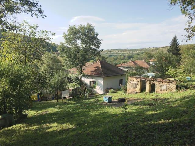 Dolno-Ryakhovo的民宿