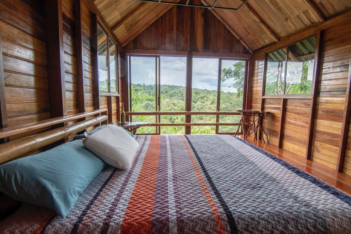 Sweet home in the Amazon region