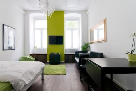 Charming Viennese Appartement