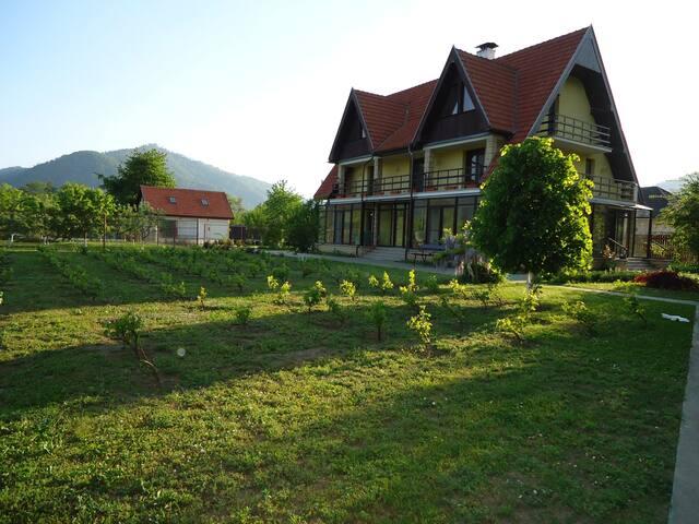 Vaduri Village的民宿