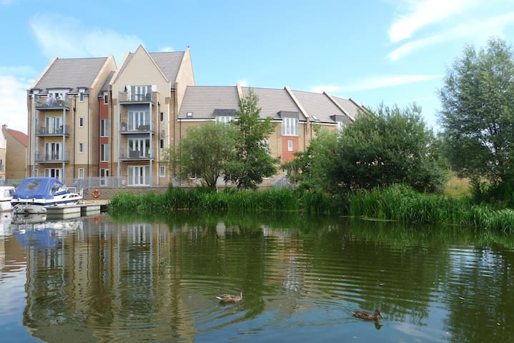 2-3 Nice Double Rooms in Riverside House