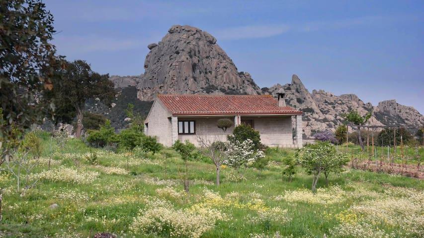 Tempio Pausania的民宿