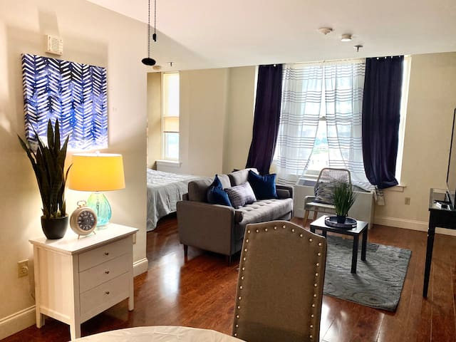 🌟1 BR apartment in Downtown Free WiFi